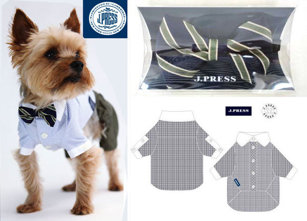 J. Press shirt and tie for dog