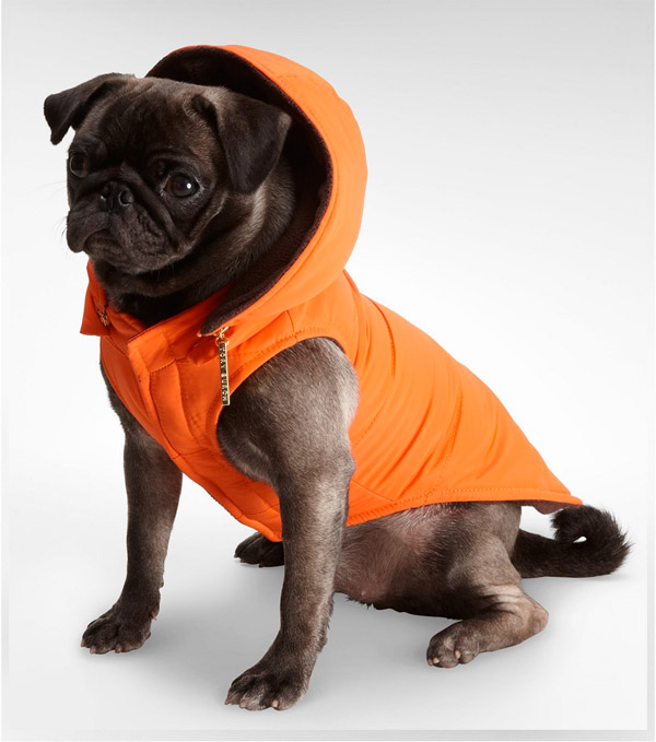 Tory Burch Dog Coat in Hot Orange