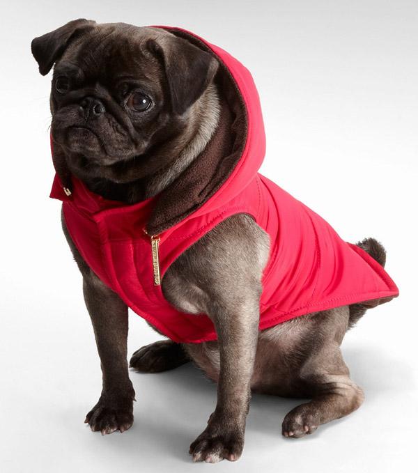 Tory Burch Dog Coat in Pink Love